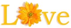 love_flower1